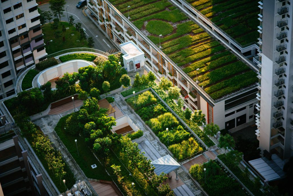 Agriculture urbaine en milieu rurale