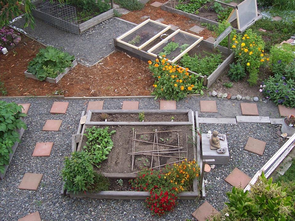 pratique agricole dans un jardin